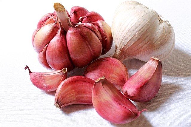 Is garlic healthy