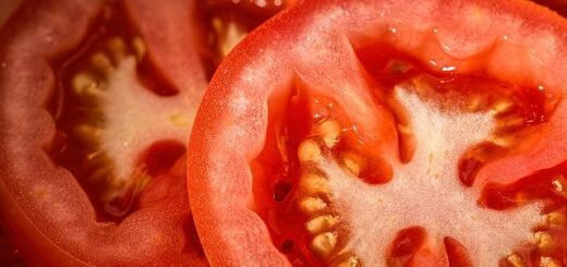 Are tomatoes good for you