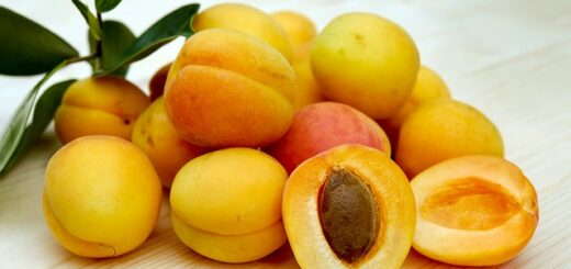 How to store apricots