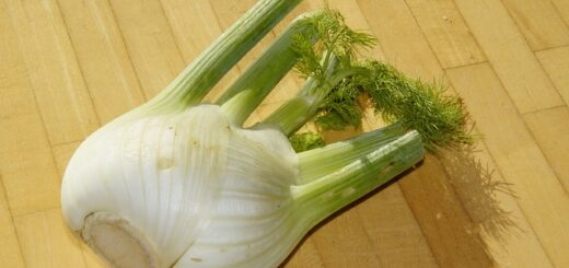 How to store fennel