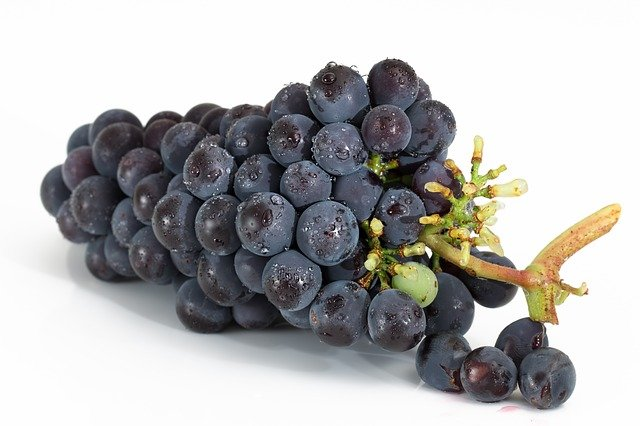 How to store grapes in the fridge