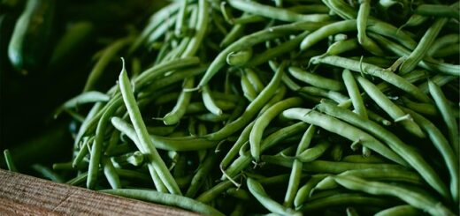 how to store green beans