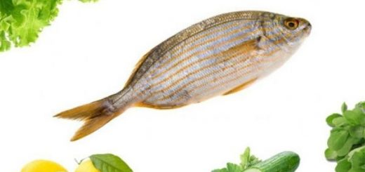 Sarpa Fish