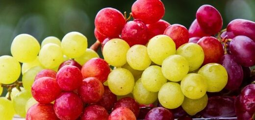 how to store grapes