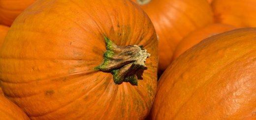 types of pumpkin