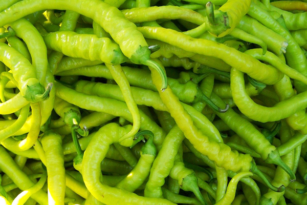 9 Important Benefits of Eating Pointed Peppers
