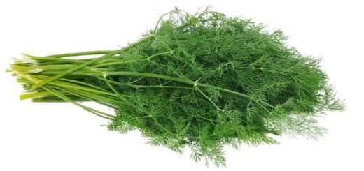 Benefits of Dill