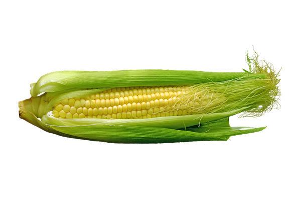Calories in Corn