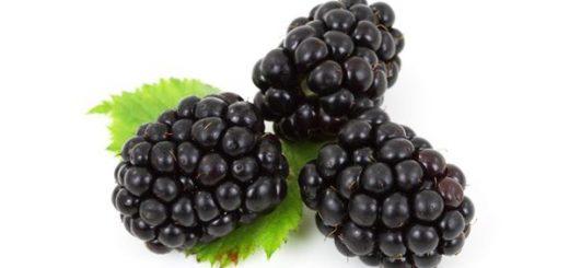 Blackberry Calories