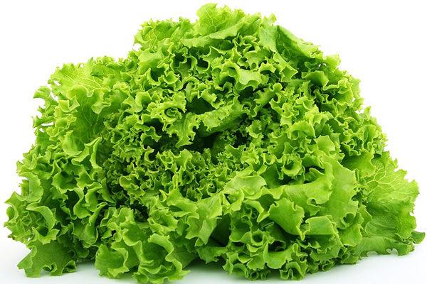 Lettuce Nutritional Value
