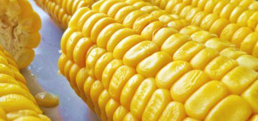 Calories in Boiled Corn