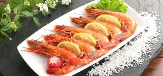 What is Shrimp