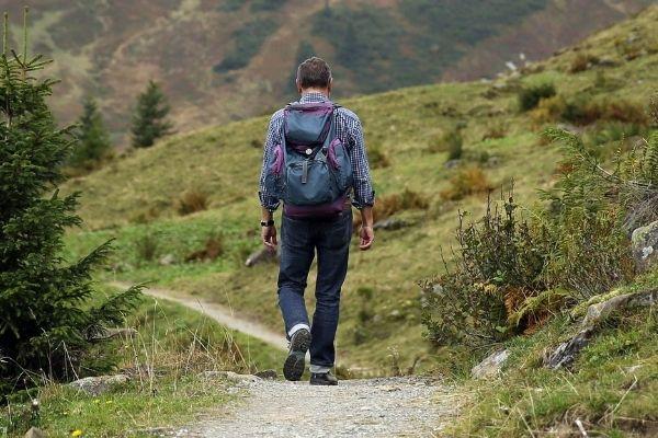 Calories Does 1 Hour Walking Burn