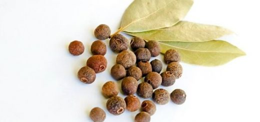 Benefits of Bay Seed