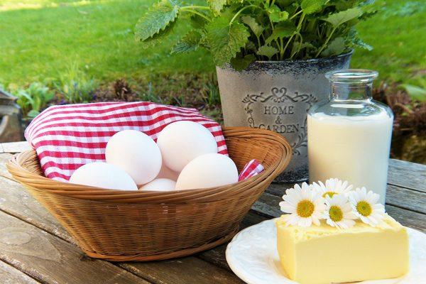 What Are Calcium Containing Foods
